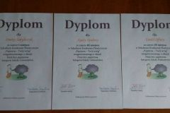 dyplomyplastDSCN0001_rs