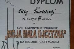 dyplomyplastDSCN0004_rs