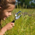Zajęcia dla dzieci – Ciekawość