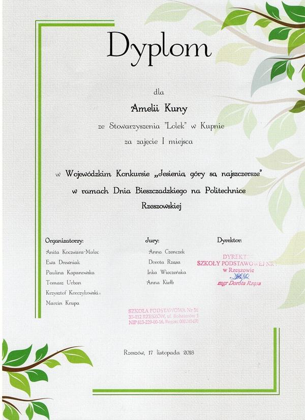 Gratulujemy Amelii!